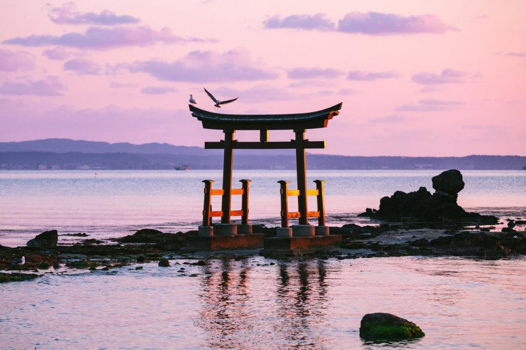 Michael Philip Atkins Japan